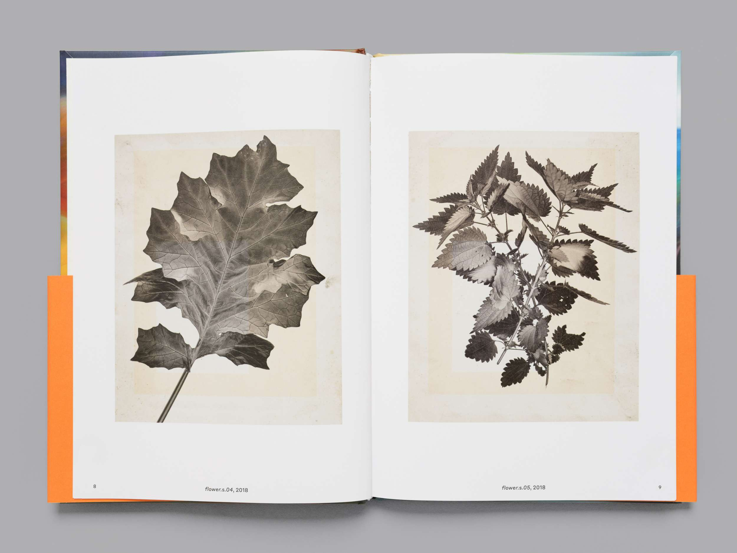 David Zwirner Books